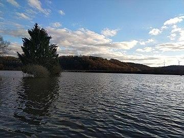 Saarland Biosphärenreservat Bliesgau Saarpfalz Kreis Überflutete Weide 001.jpg