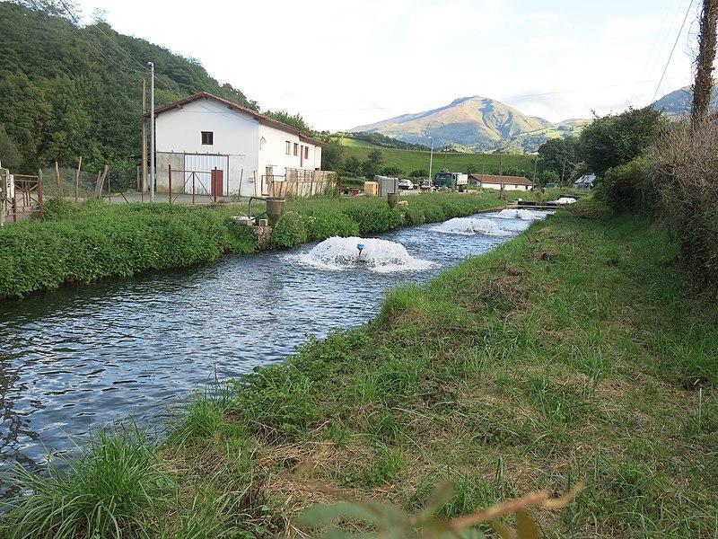 Trout farm in Saint-Étienne-de-Baïgorry (Pyrénées-Atlantiques, France).