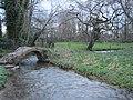 Saint-Germain-de-Tournebut - ruisseau de la Franqueterre.JPG