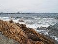 Saint-Tropez - panoramio (17).jpg