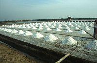 Saline Salzgewinnung Bangkok.jpg