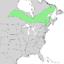 Salix pellita range map 2.png