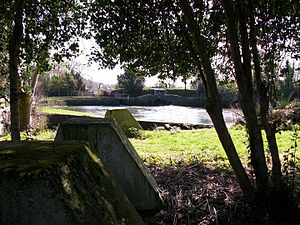 Swaythling - Salmon Pool, Swaythling (showing WWII era dragon's teeth in the foreground of the picture)
