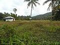 Samui (2014 febr.) - panoramio (100).jpg