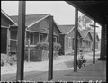 San Pedro, California. Former dwellings of fishermen of Japanese ancestry on Terminal Island in Los . . . - NARA - 536833.tif