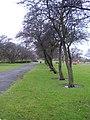 Sandall park. - geograph.org.uk - 1729364.jpg