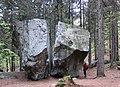 Sass Fendù Foppiano di Crodo, lowering rope, boulder, woodland (Verbano-Cusio-Ossola), 2017-04-24.jpg