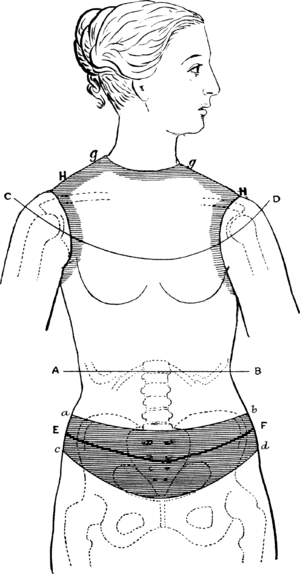 science of dress  chapter xi