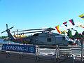 Sea Hawk SNMG 1.jpg