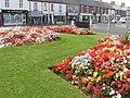 Seaton Delavals Summer Flower Show - geograph.org.uk - 151541.jpg