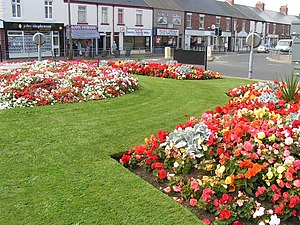 Seaton Delaval - Image: Seaton Delavals Summer Flower Show geograph.org.uk 151541