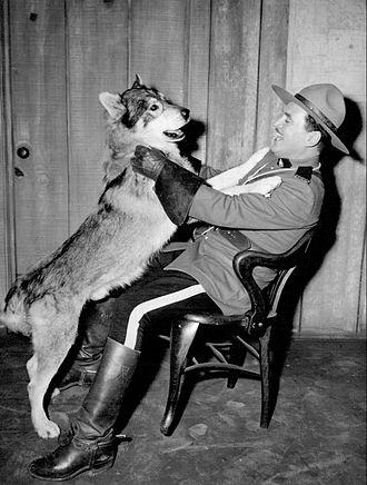Richard Simmons (actor) - Simmons as Sergeant Preston with Yukon King, 1955
