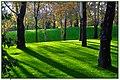 Shadows in Farkoosh Garden - panoramio.jpg