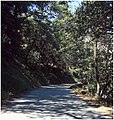 Shady Lane, Oak Glen, CA.6-23-12 (7449454058).jpg