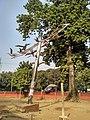 Shantir Paira sculpture at TSC DU (3).jpg