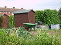 Sheds at the Elmgrove allotments.jpg