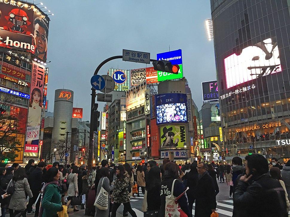 Shibuya crossing night