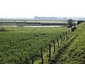 Site Oud Fort Isabella, Retranchementstraat, Knokke (Knokke-Heist).jpg