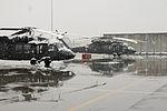 Snow covered Black Hawks 140206-A-YC911-003.jpg