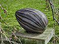 Social egg of mozaiek ei, kunst in het Amstelpark pic4.jpg