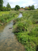 A small inland stream forms the source of a natural river water certified reference material