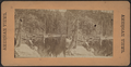 South Lake, Catskill Mountains, from Robert N. Dennis collection of stereoscopic views.png