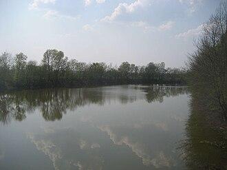 Spačva (river) - Image: Spacva 1, Croatia
