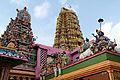 Sri lanka 2422a.jpg