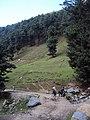 Srinagar - Pahalgam views 68.JPG