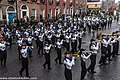 St. Patrick's Day Parade (2013) In Dublin - Bartlesville High School Marching Band, Oklahoma, USA (8565428341).jpg