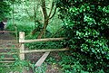 Stile on the footpath near Fairhill - geograph.org.uk - 1350178.jpg