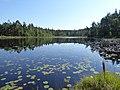 Stora Brastjarnen Vastergotland Sweden from SW August 7 2020.jpg