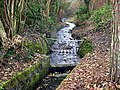 Stream - geograph.org.uk - 506284.jpg