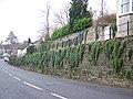 Street Scene, Stalbridge - geograph.org.uk - 703481.jpg
