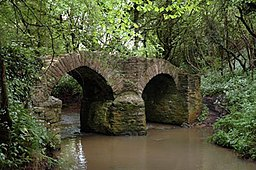 Sturt Bridge - geograph.org.uk - 102063.jpg