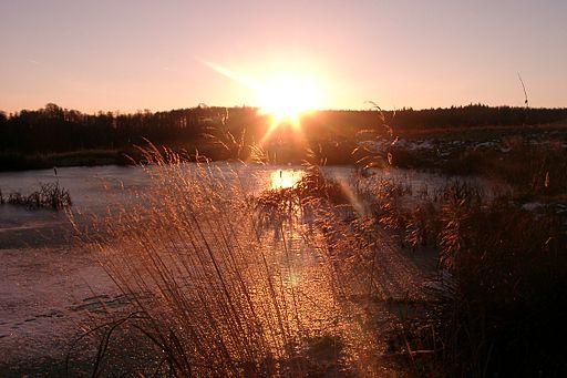 Sunrise Tharandt Forstgarten 2005 01 05 P1