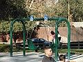Swings for wheelchair users.jpg