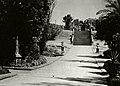 Sydney Botanic Garden - 1940 (26806473615).jpg