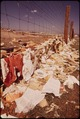 TRASH OFTEN BLOWS OVER FENCES AROUND JEFFERSON COUNTY'S OPEN DUMP AND LANDS MILES AWAY - NARA - 544823.tif