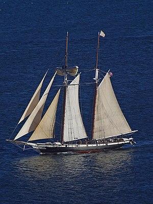 Topsail schooner Californian - A ship seen fro...