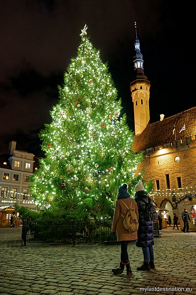 File:Tallinn Christmas tree 2016.jpg