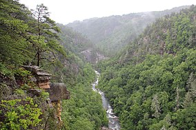 Tallulah Gorge view from an overlook, May 2017 1.jpg