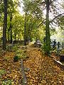 Tartu Vanausuliste kalmistu2, 2011, regnr 4327.jpg