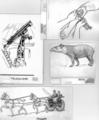 Tattoo telescope tapir tandem.png