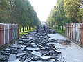 Temple of Heaven Park walkway demo.JPG