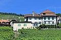 Terrasses de Lavaux - panoramio (83).jpg