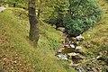 The Afon Corrwg Fechan - Glyncorrwg - geograph.org.uk - 1502498.jpg