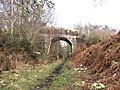 The Ark Bridge - geograph.org.uk - 142393.jpg