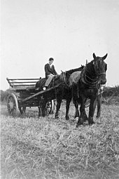 A black-and-white photo of a horse, a man and an agricultural device