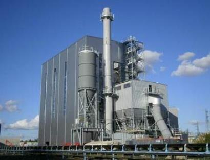 The Helius CoRDe Biomass Plant. Rothes